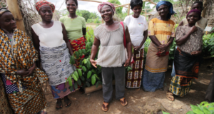 How Female Cocoa Farmers In West Africa Play A Key Role In Creating Sustainable Communities